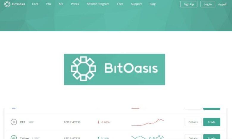 BitOasis Crypto Estafa